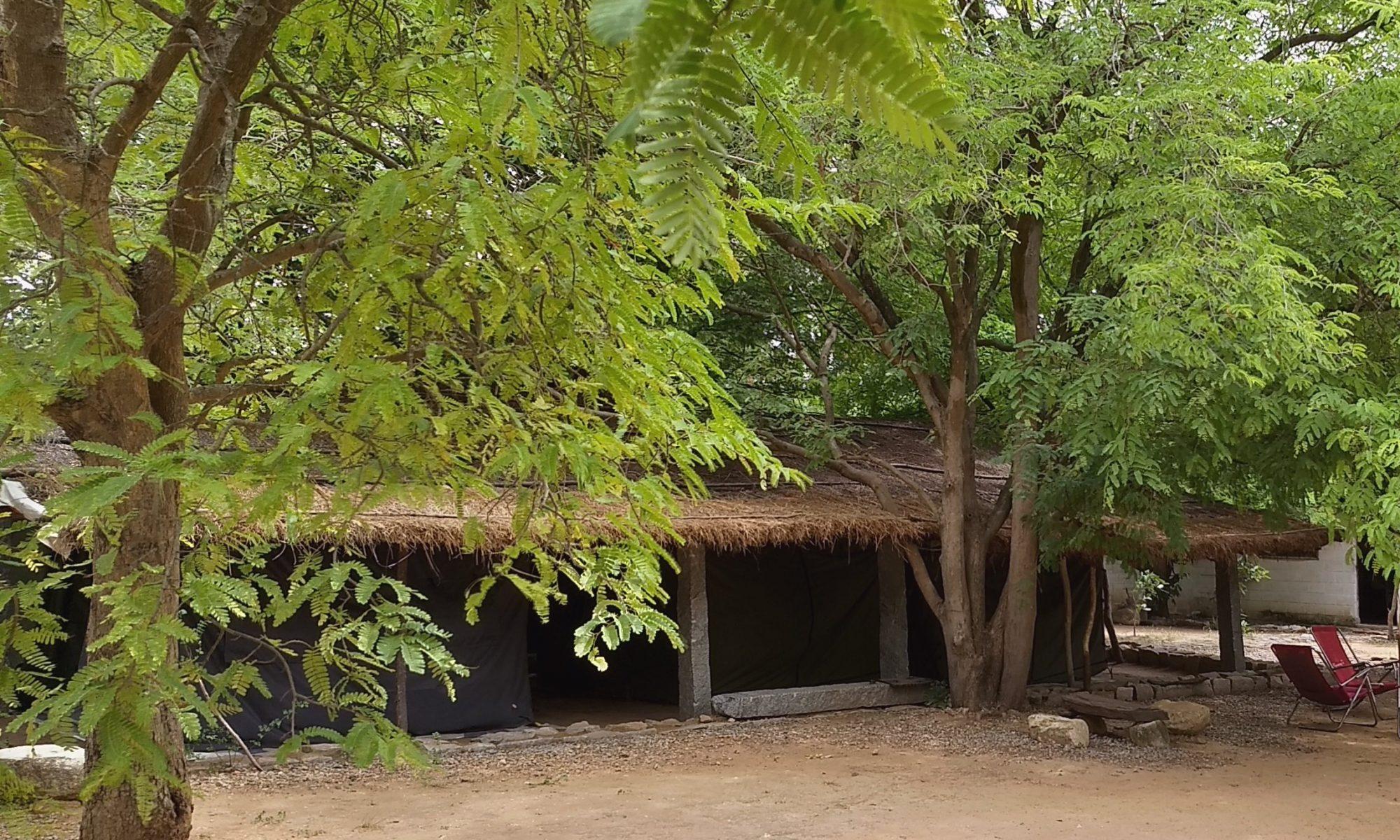 Camp Linger. Nachikuppam, Krishnagiri